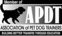 ADPT Logo Black