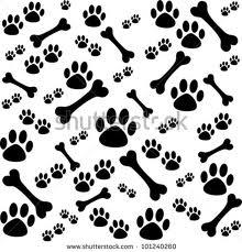 paw bone image 2